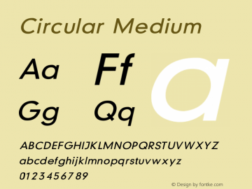 Circular Medium V1.00图片样张