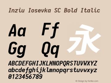 Inziu Iosevka SC Bold Italic Version 1.13.0图片样张