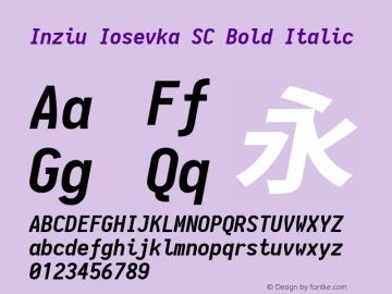 Inziu Iosevka SC Bold Italic Version 1.13.1图片样张