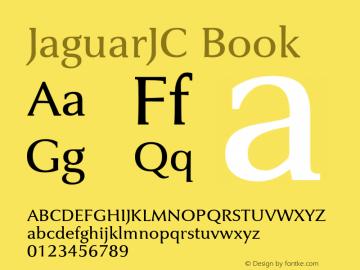 JaguarJC Book Macromedia Fontographer 4.1 23/4/96图片样张