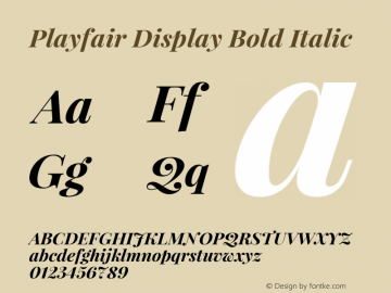 Playfair Display Bold Italic Version 1.000图片样张
