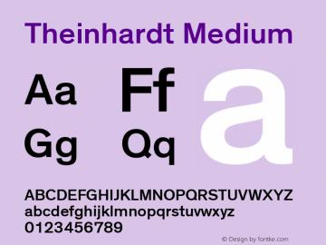 Theinhardt-Md Version 002.000图片样张