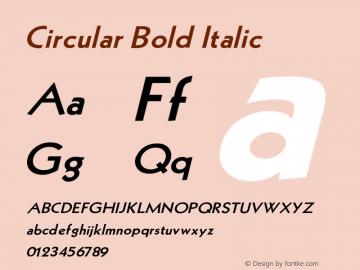 Circular Bold Italic V1.00图片样张