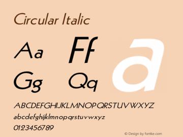 Circular Italic V1.00图片样张