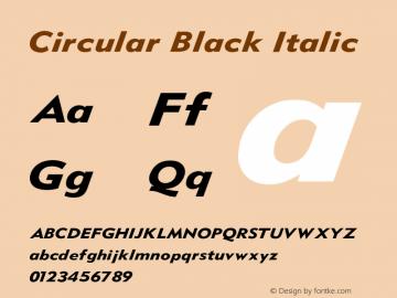 Circular Black Italic V1.00图片样张
