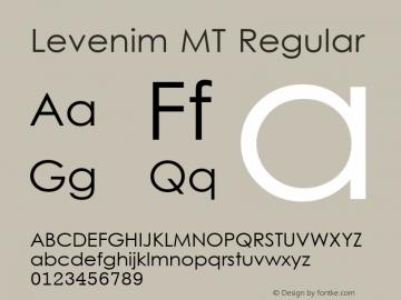 Levenim MT Regular Version 1.00 Font Sample