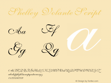 Shelley-VolanteScript OTF 1.0;PS 001.003;Core 1.0.22图片样张