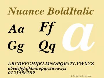 Nuance BoldItalic Macromedia Fontographer 4.1 18.06.1995图片样张