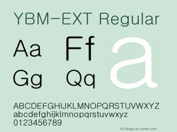 YBM-EXT Version 1.0图片样张