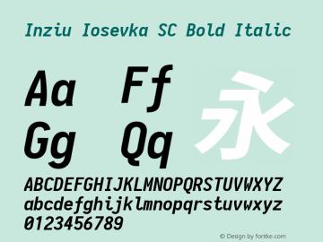 Inziu Iosevka SC Bold Italic Version 1.13.2图片样张
