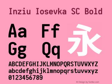 Inziu Iosevka SC Bold Version 1.13.2图片样张