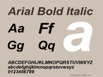 Arial Bold Italic Version 3.05图片样张