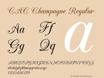 CAC Champagne Macromedia Fontographer 4.1.5 01.17.03图片样张