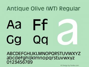 Antique Olive (WT) 19: 91119图片样张