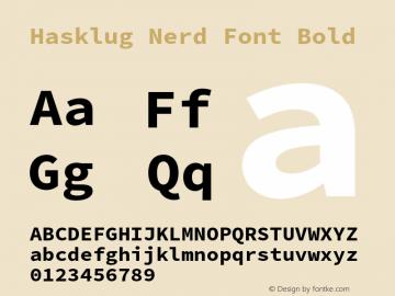 Hasklug Bold Nerd Font Complete Version 2.010;PS 1.0;hotconv 1.0.88;makeotf.lib2.5.647800 Font Sample