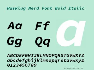 Hasklug Bold Italic Nerd Font Complete Version 1.030;PS 1.0;hotconv 1.0.88;makeotf.lib2.5.647800 Font Sample