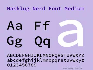 Hasklug Medium Nerd Font Complete Version 2.010;PS 1.0;hotconv 1.0.88;makeotf.lib2.5.647800 Font Sample