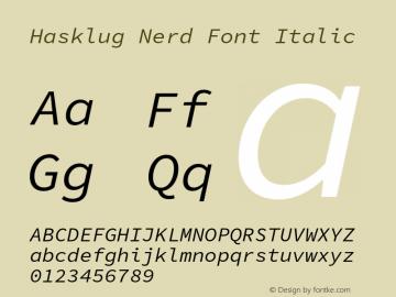 Hasklug Italic Nerd Font Complete Version 1.030;PS 1.0;hotconv 1.0.88;makeotf.lib2.5.647800 Font Sample