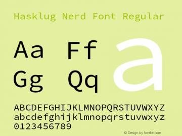 Hasklug Nerd Font Complete Version 2.010;PS 1.0;hotconv 1.0.88;makeotf.lib2.5.647800 Font Sample
