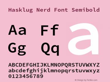 Hasklug Semibold Nerd Font Complete Version 2.010;PS 1.0;hotconv 1.0.88;makeotf.lib2.5.647800 Font Sample