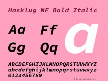 Hasklug Bold Italic Nerd Font Complete Windows Compatible Version 1.030;PS 1.0;hotconv 1.0.88;makeotf.lib2.5.647800 Font Sample
