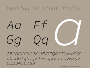 Hasklug Light Italic Nerd Font Complete Windows Compatible Version 1.030;PS 1.0;hotconv 1.0.88;makeotf.lib2.5.647800 Font Sample