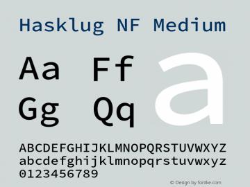 Hasklug Medium Nerd Font Complete Windows Compatible Version 2.010;PS 1.0;hotconv 1.0.88;makeotf.lib2.5.647800 Font Sample