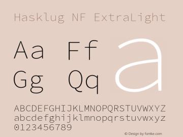 Hasklug ExtraLight Nerd Font Complete Windows Compatible Version 2.010;PS 1.0;hotconv 1.0.88;makeotf.lib2.5.647800 Font Sample