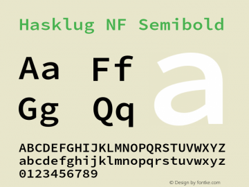 Hasklug Semibold Nerd Font Complete Windows Compatible Version 2.010;PS 1.0;hotconv 1.0.88;makeotf.lib2.5.647800 Font Sample