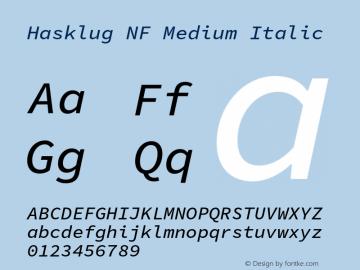 Hasklug Medium Italic Nerd Font Complete Windows Compatible Version 1.030;PS 1.0;hotconv 1.0.88;makeotf.lib2.5.647800 Font Sample