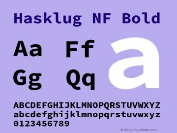 Hasklug Bold Nerd Font Complete Mono Windows Compatible Version 2.010;PS 1.0;hotconv 1.0.88;makeotf.lib2.5.647800 Font Sample