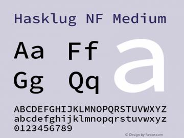 Hasklug Medium Nerd Font Complete Mono Windows Compatible Version 2.010;PS 1.0;hotconv 1.0.88;makeotf.lib2.5.647800 Font Sample
