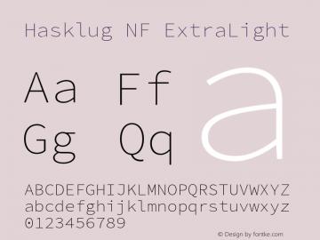 Hasklug ExtraLight Nerd Font Complete Mono Windows Compatible Version 2.010;PS 1.0;hotconv 1.0.88;makeotf.lib2.5.647800 Font Sample