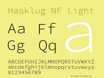 Hasklug Light Nerd Font Complete Mono Windows Compatible Version 2.010;PS 1.0;hotconv 1.0.88;makeotf.lib2.5.647800 Font Sample