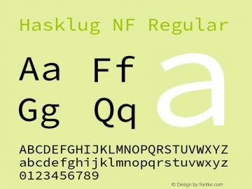 Hasklug Nerd Font Complete Mono Windows Compatible Version 2.010;PS 1.0;hotconv 1.0.88;makeotf.lib2.5.647800 Font Sample