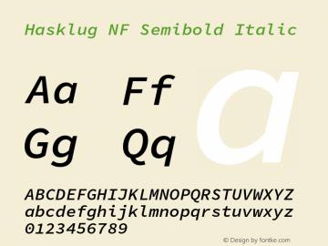 Hasklug Semibold Italic Nerd Font Complete Mono Windows Compatible Version 1.030;PS 1.0;hotconv 1.0.88;makeotf.lib2.5.647800 Font Sample