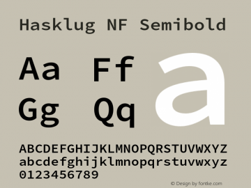 Hasklug Semibold Nerd Font Complete Mono Windows Compatible Version 2.010;PS 1.0;hotconv 1.0.88;makeotf.lib2.5.647800 Font Sample