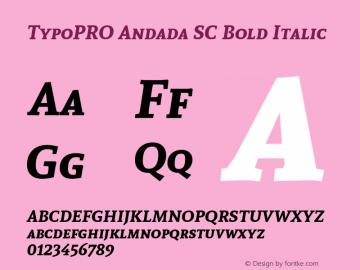 TypoPRO Andada SC Bold Italic Version 1.003图片样张