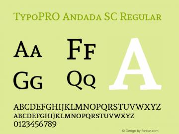 TypoPRO Andada SC Version 1.003图片样张