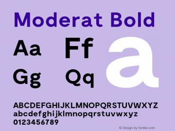 Moderat Bold Version 1.000;PS 001.000;hotconv 1.0.88;makeotf.lib2.5.64775图片样张