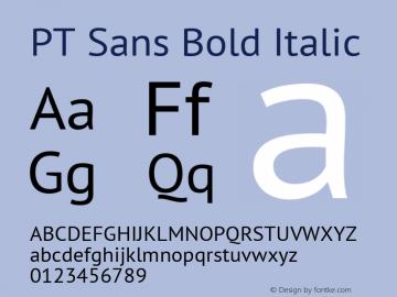 PT Sans Bold Italic 13.0d3e2图片样张