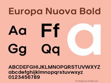 Europa Nuova Font,Europa Nuova Bold Font,Europa-Nuova-Bold