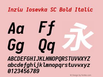 Inziu Iosevka SC Bold Italic Version 1.13.3图片样张