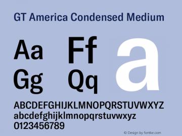 GT America Condensed Medium Version 5.001;PS 005.001;hotconv 1.0.88;makeotf.lib2.5.64775图片样张
