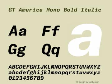 GT America Mono Bold Italic Version 2.001;PS 002.001;hotconv 1.0.88;makeotf.lib2.5.64775图片样张