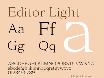 Editor Light Version 1.0图片样张