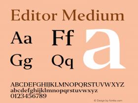 Editor Medium Version 1.0图片样张