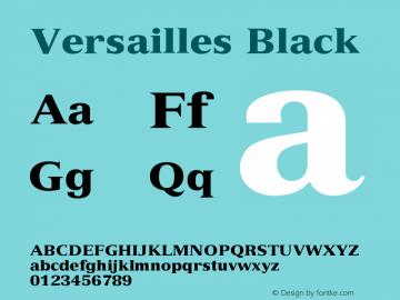Versailles 95 Black Version 001.003图片样张