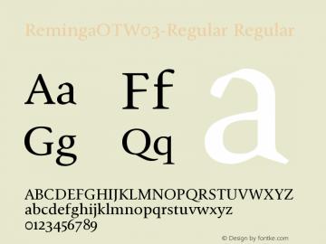 Reminga OT W03 Regular Version 7.504图片样张