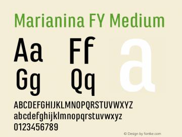 Marianina FY Medium Version 1.000图片样张